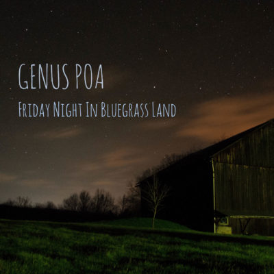 Genus Poa - Friday Night In Bluegrass Land