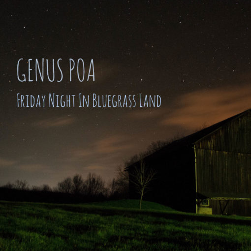 Genus Poa - Friday Night In Bluegrass Land
